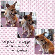 Meggie_27Feb16