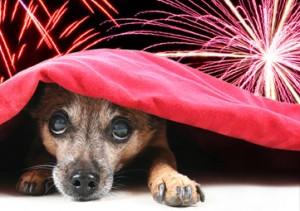 fireworks-300x211