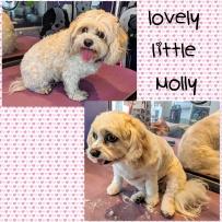 Molly_6July18